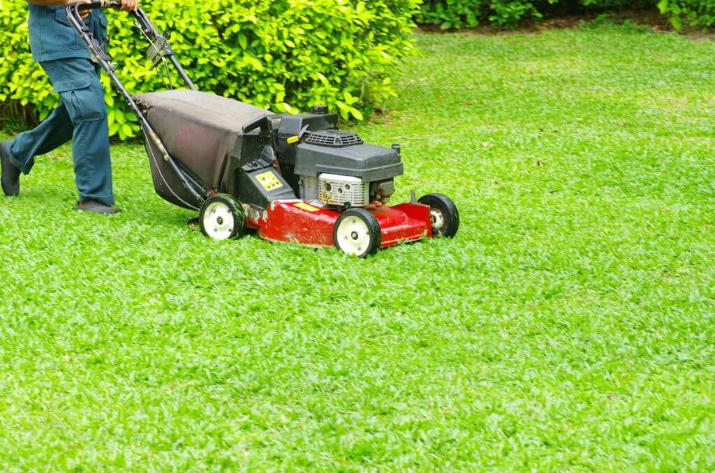 Lawn Care Worker Mowing Grass With A Red Mower