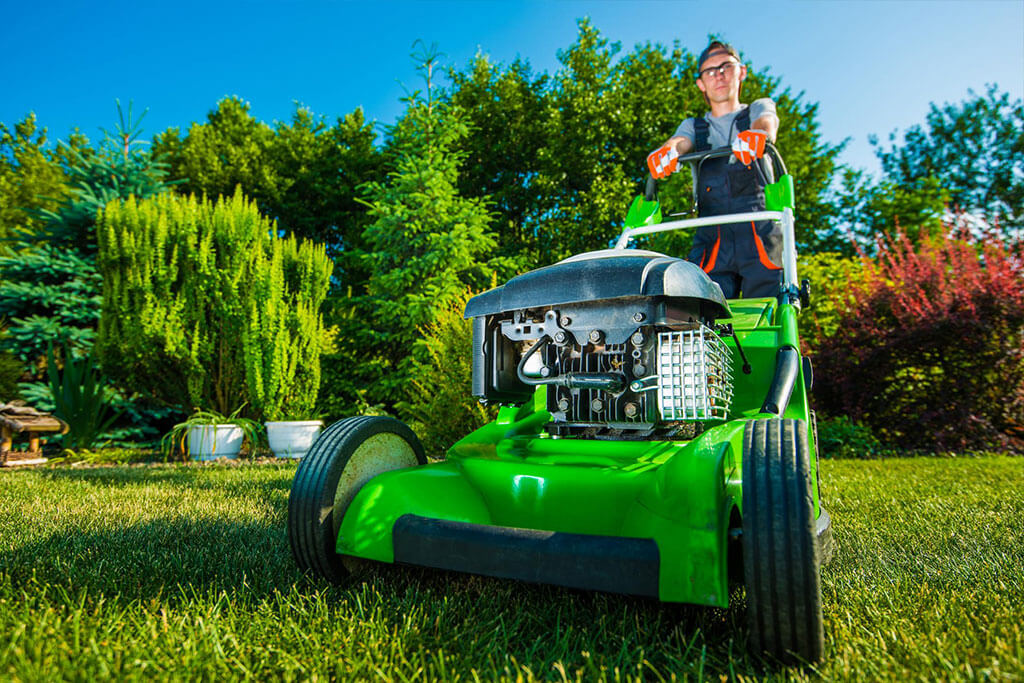 Lawn Mowing At Its Finest With A Brand New Law Mower
