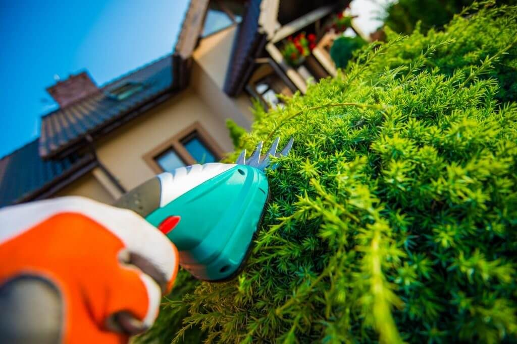 Trimming A Customers Hedges